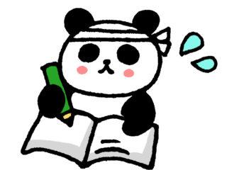一生懸命勉強するパンダ