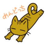 めんどっちと寝そべる猫